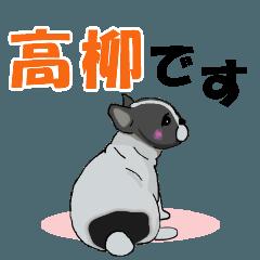 高柳さん用の名前スタンプ・子犬イラスト