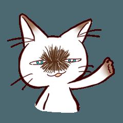 岡山弁ねこちゃんテチ