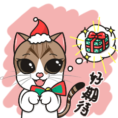 Christmas And New Year With Cats TWN