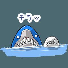 サメ君とアザラシ君