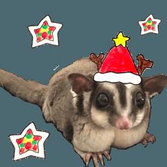 モモンガ☆もんじろうのクリスマス
